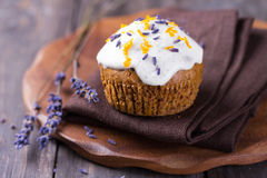 Zoete pompoen cupcake Stock Afbeeldingen