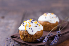 Zoete pompoen cupcake Stock Fotografie