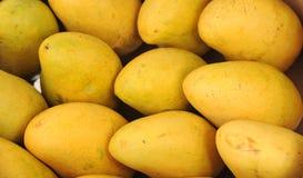 Zoete rijpe mango royalty-vrije stock foto