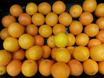 Zoete sinaasappel Stock Afbeeldingen