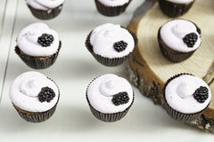 Zoete verfraaide cupcakes Stock Afbeelding