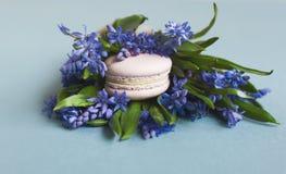 Zoete zachte makarons met bloemen stock afbeeldingen