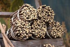 Zoethoutwortels aan de markt Royalty-vrije Stock Foto's