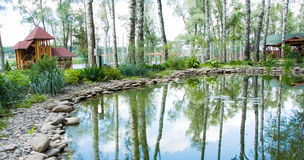 Zoetwater moeras stock foto
