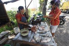 Zoetwatervissen stock afbeeldingen