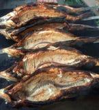 Zoetwaterwitte viscoregonus lavaretus bij meer Sevan Royalty-vrije Stock Afbeeldingen