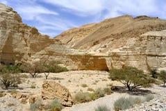 Zohar旱谷在犹太沙漠。 库存照片