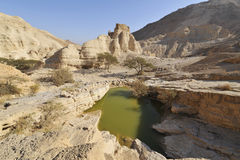 zohar沙漠的堡垒 免版税库存照片