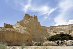 Zohar fästning i den Judea öknen. fotografering för bildbyråer