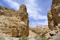 Zohar klyfta i den Judea öknen. royaltyfri bild
