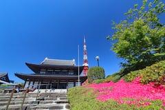 Zojo-ji świątynia i Tokio wierza obraz royalty free