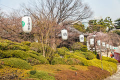 Zojoji寺庙旅行在2017年3月30日的日本 免版税库存照片