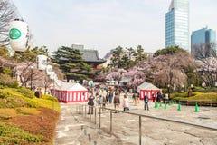 Zojoji-Tempel-Reise in Japan am 30. März 2017 Lizenzfreie Stockfotos