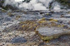 Zolfo dal geyser di Whakarewarewa al parco termico di Te Puia in Nuova Zelanda Fotografie Stock Libere da Diritti