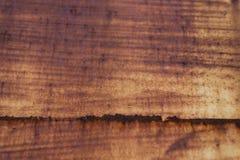 Zolla arrugginita del ferro Fotografia Stock