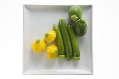 Zolla bianca con lo zucchini Fotografie Stock Libere da Diritti