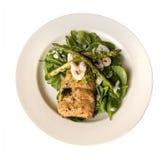 Zolla di color salmone cotta fotografia stock libera da diritti