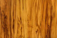 Zolla di legno Fotografia Stock Libera da Diritti