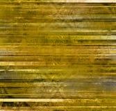 Zolla dorata Immagini Stock Libere da Diritti