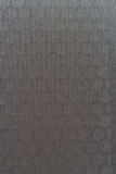 Zolla inossidabile macchiata Fotografia Stock Libera da Diritti