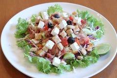 Zolla piena dell'insalata di Caesar Immagine Stock Libera da Diritti
