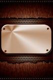 Zolle d'acciaio Immagine Stock Libera da Diritti