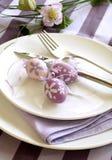 zolle ed uova di Pasqua Fotografia Stock