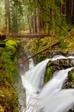 Zolu Duc spadki, Olimpijski park narodowy, stan washington, usa fotografia stock
