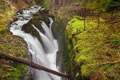 Zolu Duc spadki, Olimpijski park narodowy, stan washington, usa zdjęcie royalty free