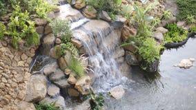 Zombaria acima da cachoeira no parque video estoque