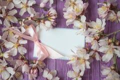 Zombaria do Livro Branco acima no fundo de madeira rústico com a flor natural do branco da mola das decorações do estilo Molde va Fotografia de Stock