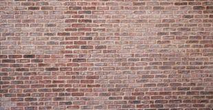 Zombaria pálida e vermelha da parede de tijolo da textura do fundo acima Foto de Stock