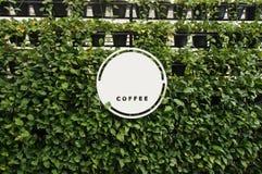 Zombe acima do branco vazio do quadro indicador no espaço da parede das plantas para o texto Imagens de Stock