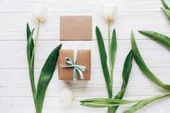 Zombe acima do cartão com a caixa e as tulipas atuais à moda no whi Foto de Stock Royalty Free