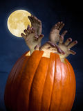 Zombi pumpkin Stock Photo