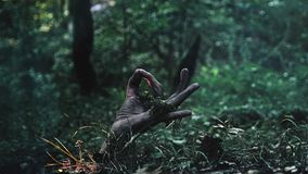 A zombie hand crawls out of the ground. shows ok sign stock photography