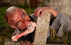 Zombie attack. Horror posing at old cemetery Stock Photography