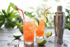 Zombie-Cocktail lizenzfreie stockfotos