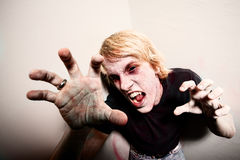 Zombie in a Corner. Young male zombie or vampire trapped in a corner Royalty Free Stock Photography