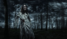 Zombie in the dead forest. Stock Image