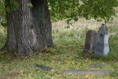 Zombie della lapide della pietra tombale della lapide del cimitero - Russia Usolye 5 ottobre 2017 fotografia stock libera da diritti