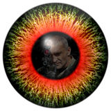 Zombie eyes with the reflection headed soldier. Eyes killer. Deadly eye contact. Animal eye with contrast colored iris. Killer zombies. Zombie eyes with the stock photo