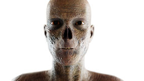 Zombie face. Close up. 3d rendering. isolate on white. Royalty Free Stock Images