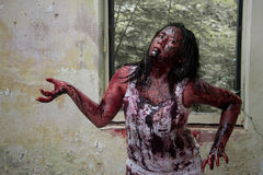 Zombie girl Royalty Free Stock Images