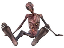 Zombie - Halloween Figure Stock Images