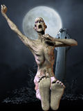 Zombie - Halloween Figure Stock Image