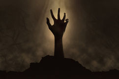 Zombie hand coming out from the grave. Halloween concept, zombie hand coming out from the grave Royalty Free Stock Image