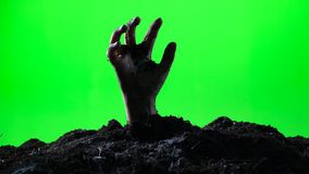 Zombie hand emerging from the ground. Green screen. 005
