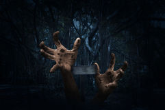 Zombie hand rising out from ground with cross over spooky forest. At night time, Horror background, Halloween concept Royalty Free Stock Images