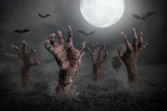 Zombie hand rising out of the ground. Halloween background stock photo